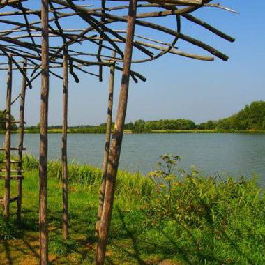 Lac de Rillé - Aude Journot - Touraine Nature